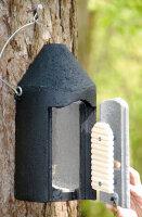 Fledermaushöhle 2F (mit doppelter Vorderwand)