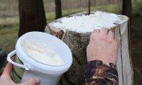 Pasta di sale aromatizzata - secchio 2kg