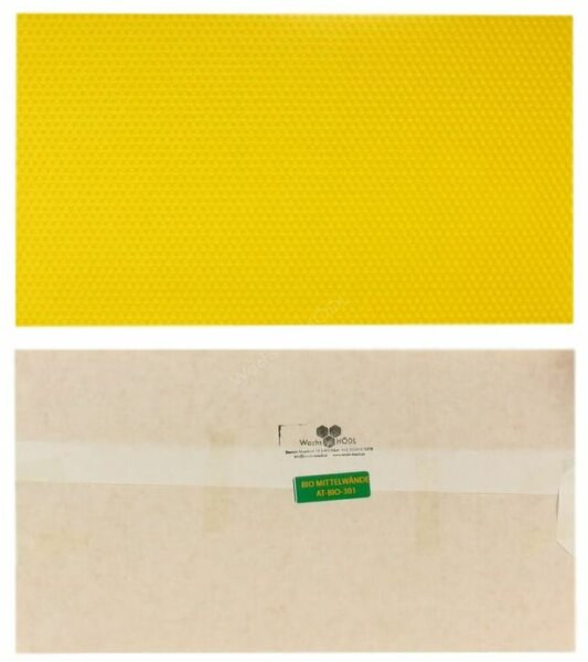 Foglio cereo medio da parete Dadant Brut 260 mm x 420 mm