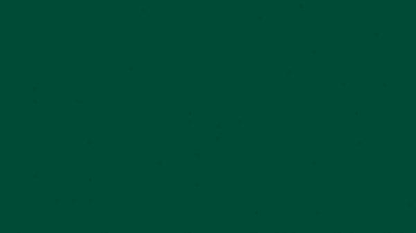 Colore protezione alveare verde 0,75l