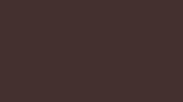 Colore protezione alveare marrone 0,75l