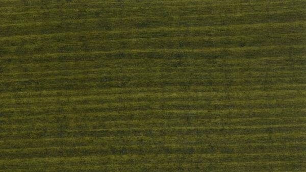 Beutenschutz-Farbe Tannengrün 2,5l