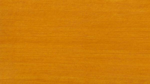 Beutenschutz-Farbe Kiefer 2,5l