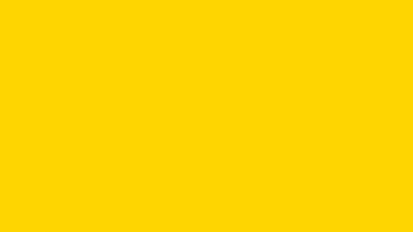 Colore protezione alveare giallo brillante 2,5l